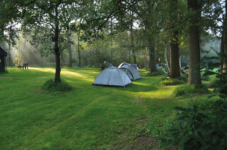 Zona de acampada del Camping Los Arenales