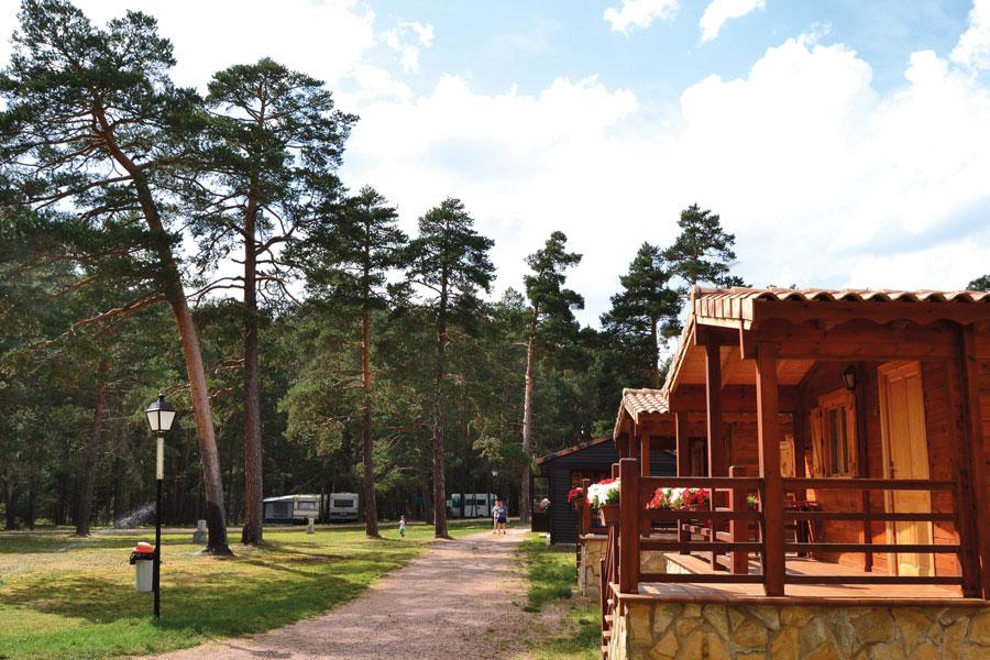 Bungalows del Camping Orea
