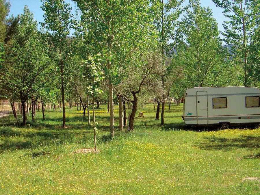 Parcelas del Camping Caravaning Cuenca