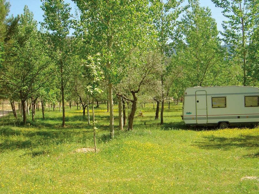 Parcelas del Camping Río Segura